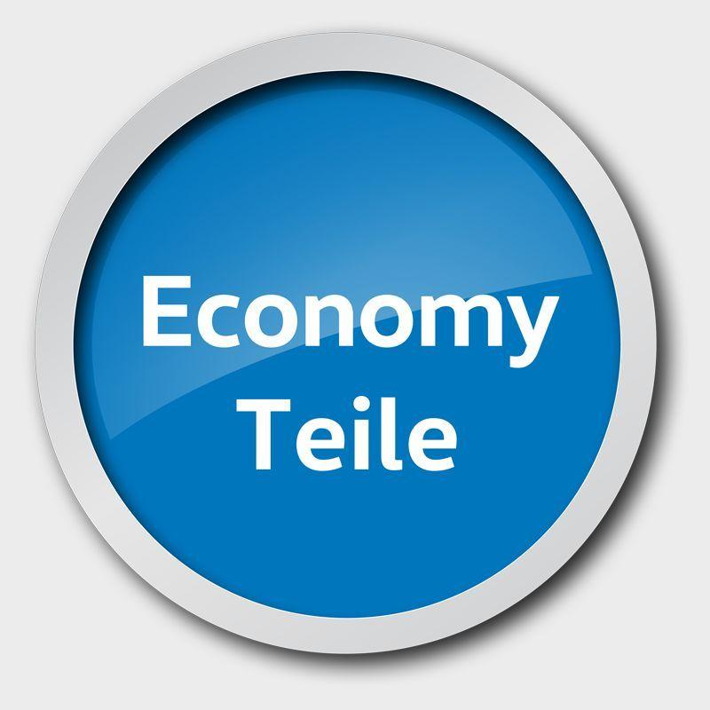Economy Zündkerze, original für Volkswagen ab dem 5. Jahr entwickelt